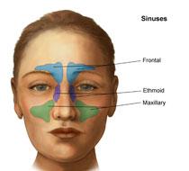 sinus treatment in ayurveda